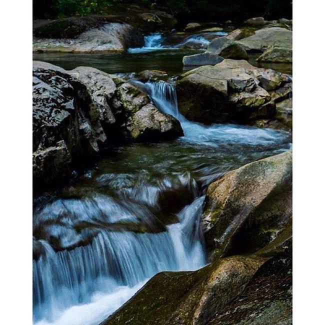 Cascades of TheBasin Katessaproductions Katessa @igersnh Igersnh thenltch nh iheartnh river cascades cascade rocks tree leaves nature naturephotography naturephotographer