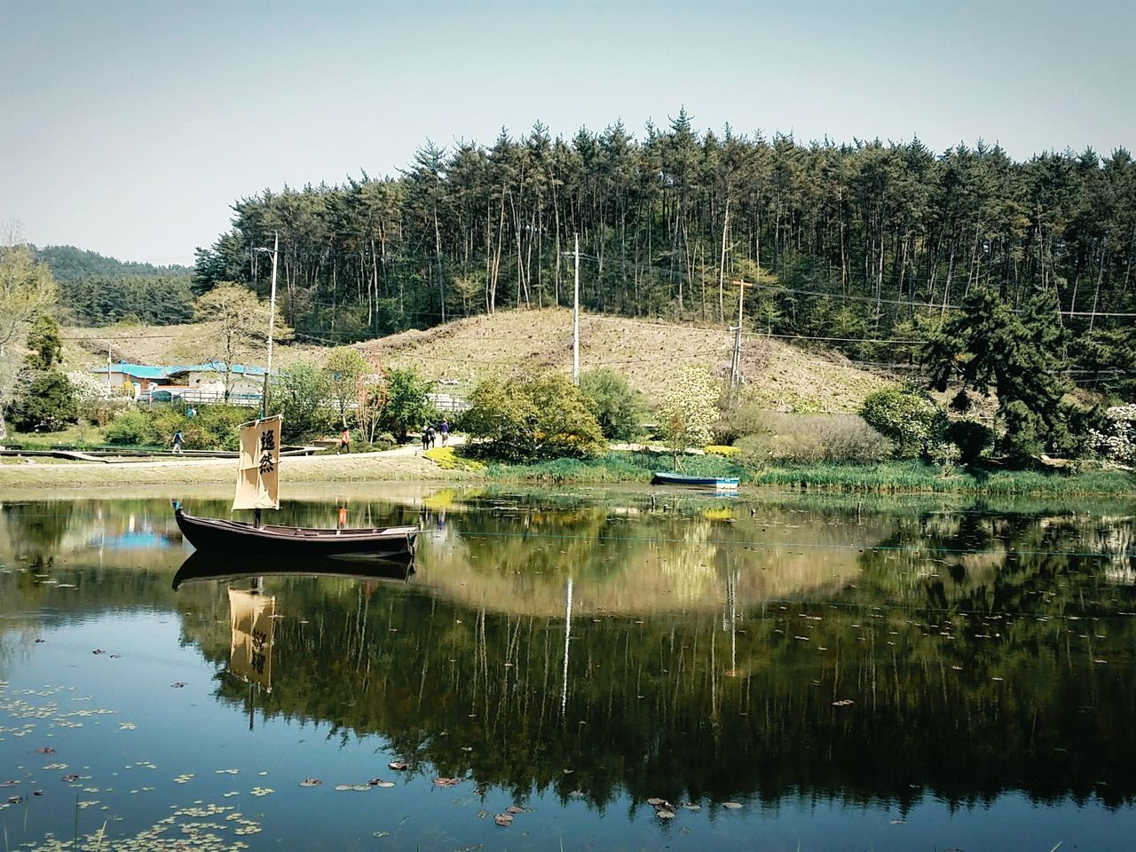 Reflection Tree Water Lake Day Outdoors Nature Sky Beauty In Nature Boat On Water Sailboat Traditional Atmosphere The Woods Mirrored Reflection Korean Countryside Korean Landscape