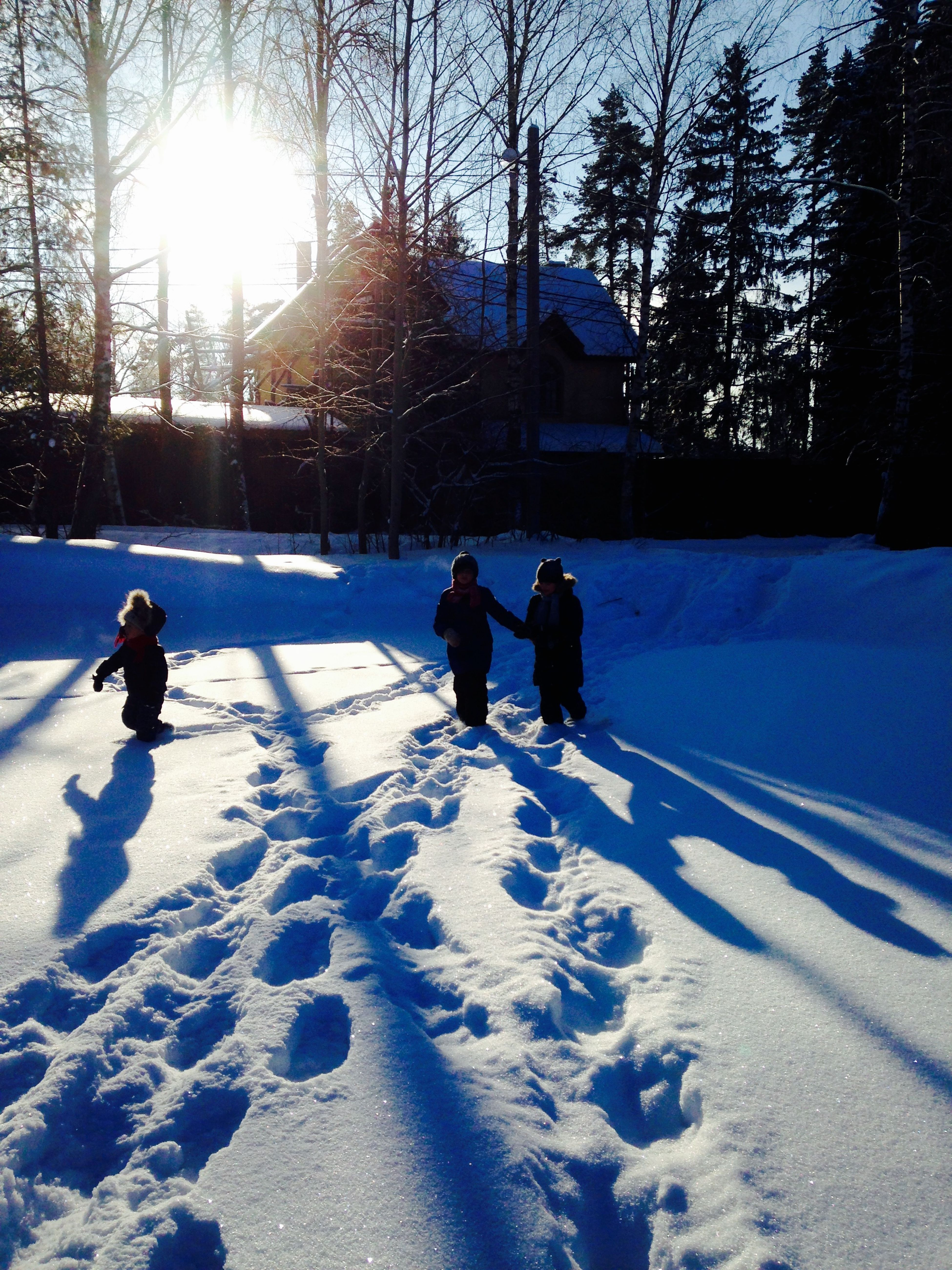 На дачке Wintertime Shadows & Lights Мороз и солнце