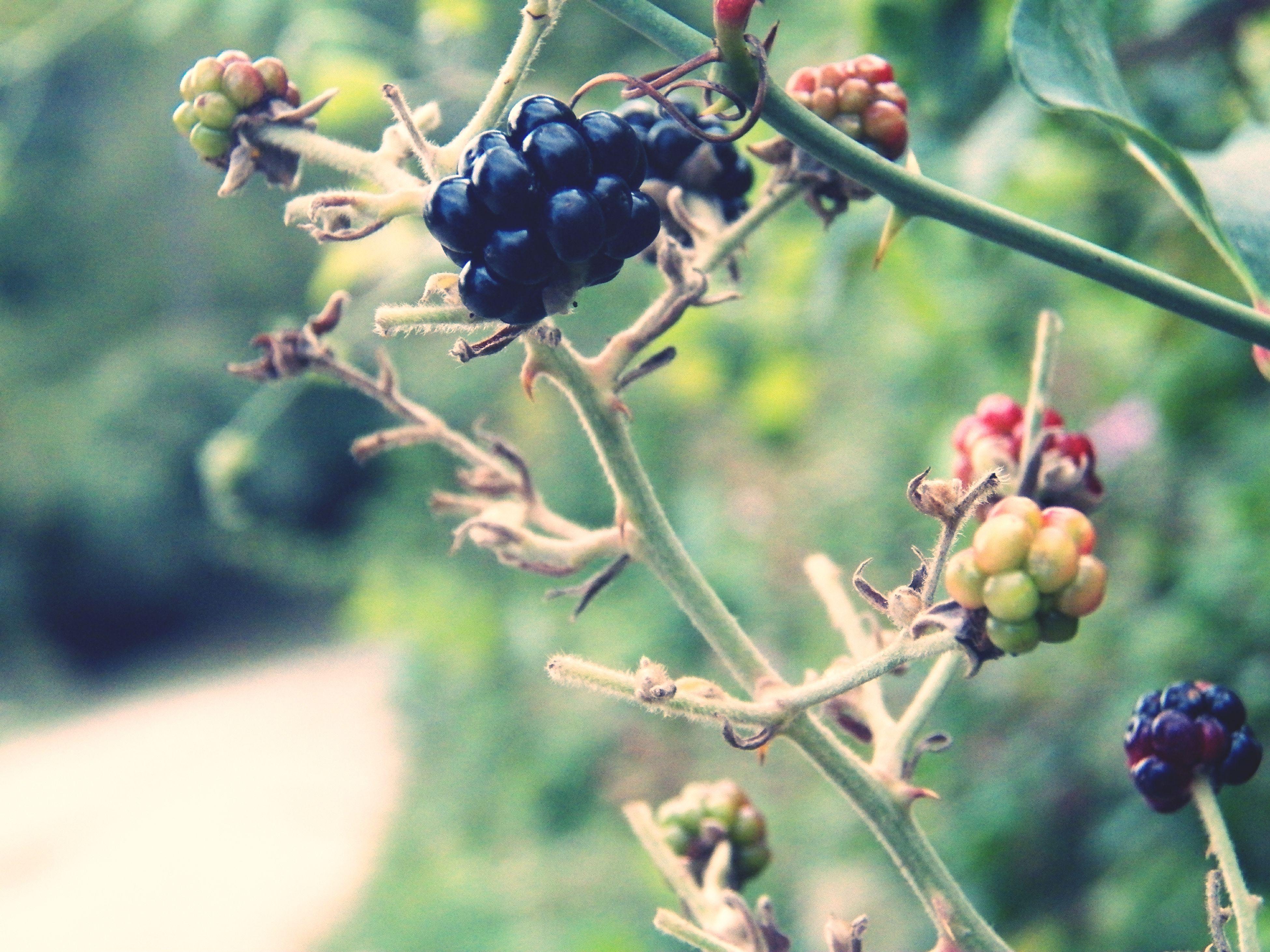 Sanatın çıkış yeri, ilham kaynağı.. ;) Taking Photos Nature Beginning Of Art