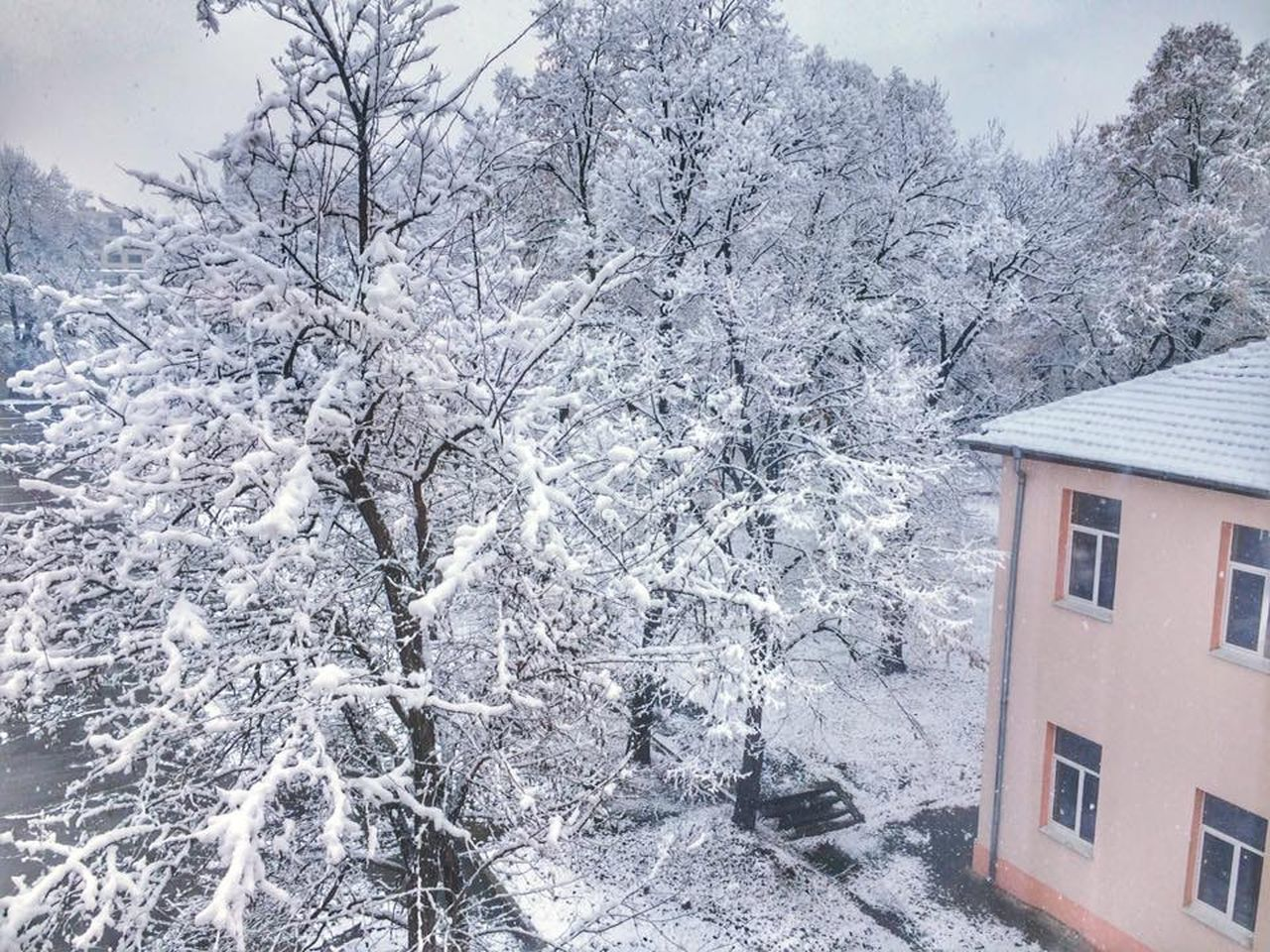 winter, snow, architecture, no people, nature, building exterior, tree, cold temperature, built structure, day, branch, outdoors, beauty in nature, sky