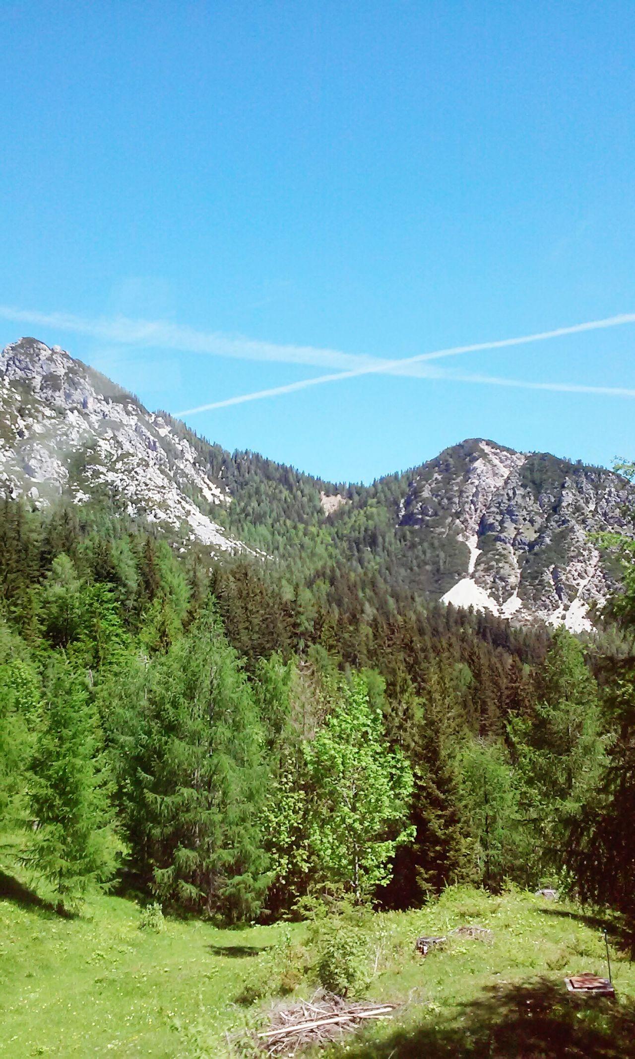 Mountains Mountain View Amazing Trees Beautiful Green Pinetrees Slovenia Vrsic Sky