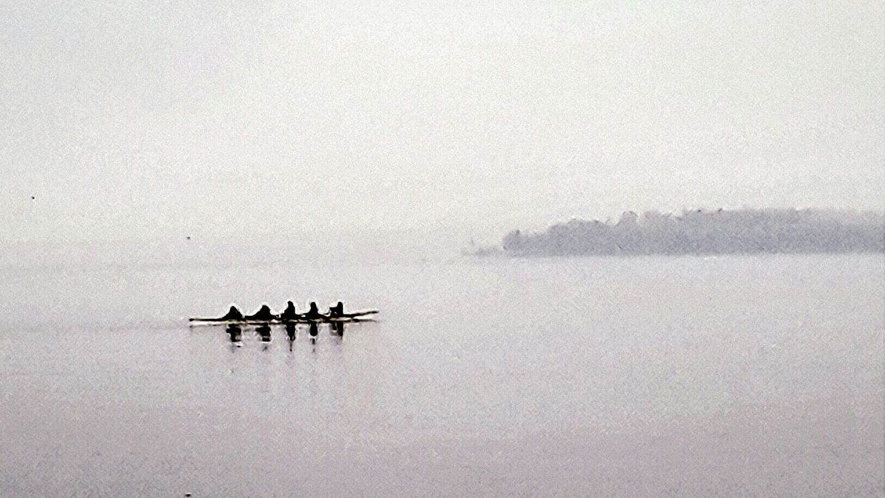 The beauty of Simplicity:Rowing, seen at the Seaside of the Lake Of Constance in Überlingen. Sport In The City Capture The Moment Watersports Boat Foggy Day Landscapes With WhiteWall