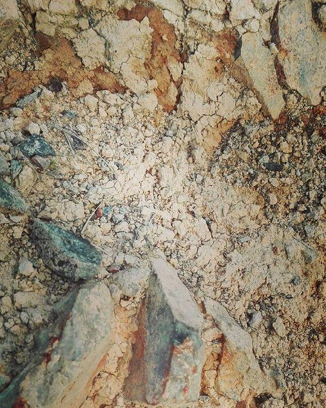 Earth Papatuanuku Dirt Rimutaka Rimutakacrossing Macro Nature NZ Newzealand Aotearoa Texture Randomtrip Wellington  Wmm_brown