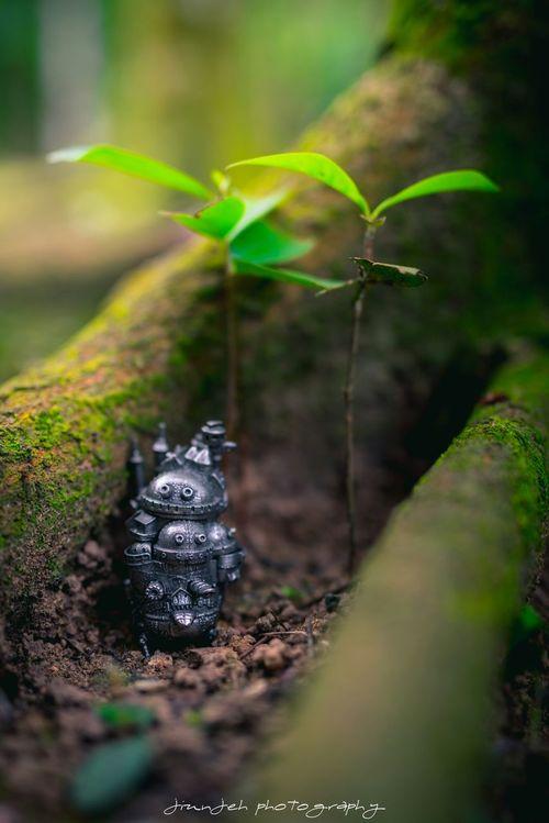 Howlsmovingcastle Funtography Forest Floor Miniature