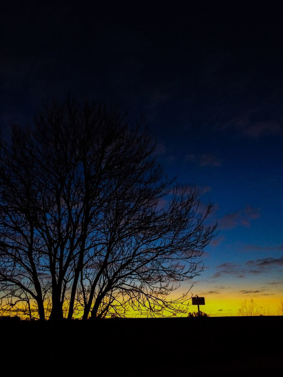 bare tree, silhouette, tree, scenics, tranquil scene, sky, tranquility, nature, beauty in nature, outdoors, no people, sunset, landscape, blue, field, yellow, night, branch