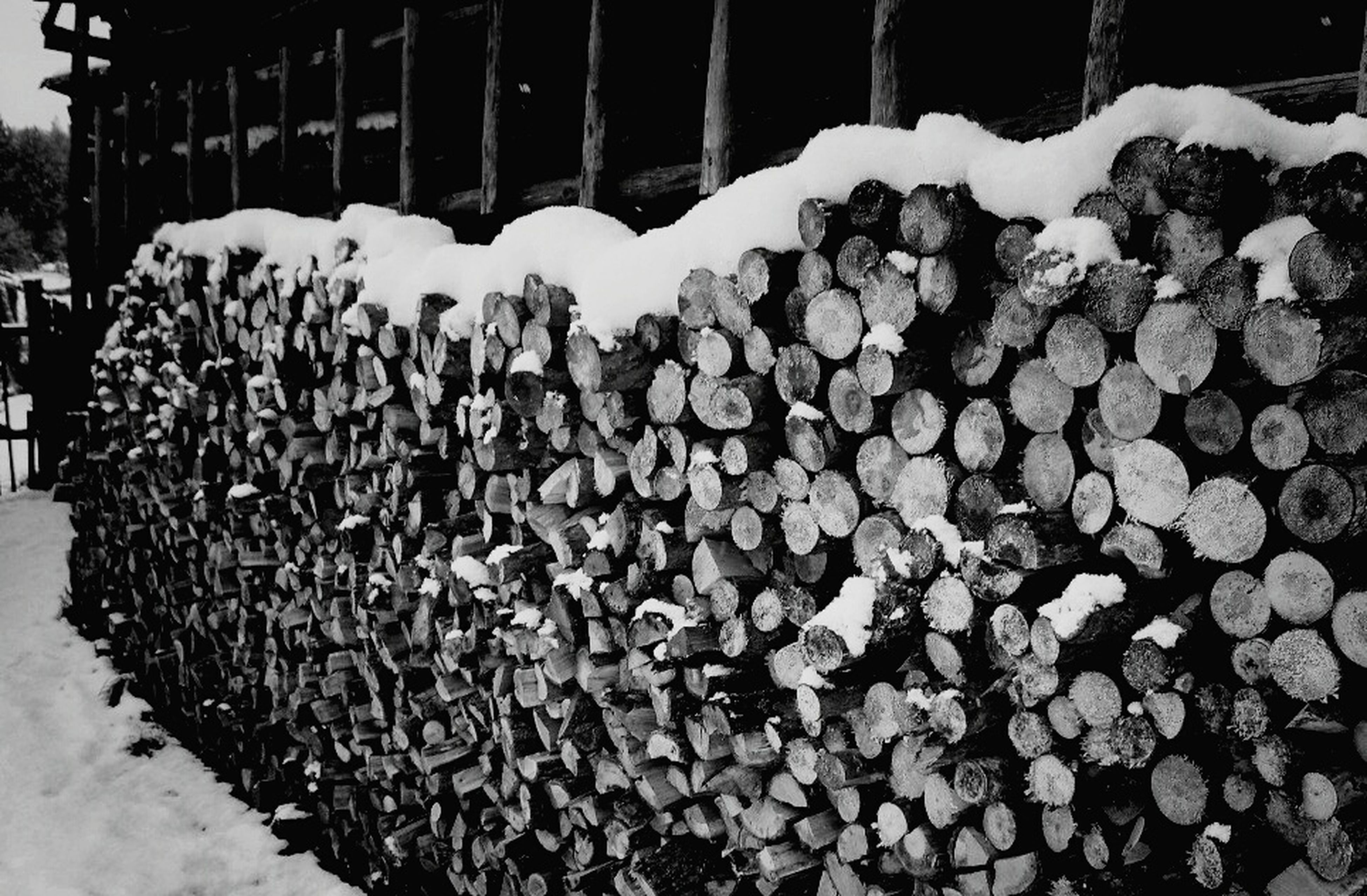 snow, cold temperature, winter, stack, large group of objects, abundance, field, outdoors, season, nature, wood - material, fence, firewood, built structure, day, covering, no people, stone - object, log, weather
