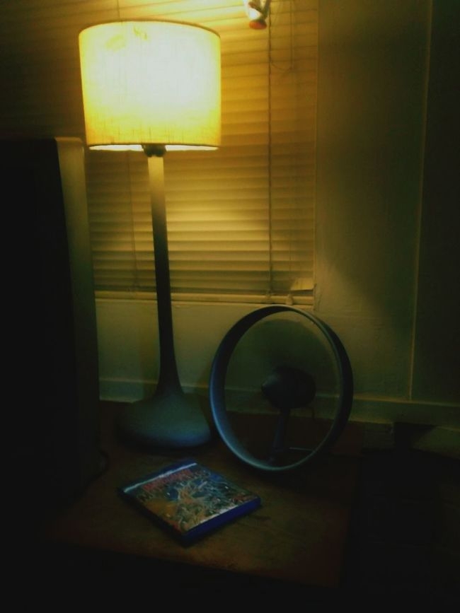 On my dresser.... my favorite Ikea lamp (Murkla, discontinued, came in 3 sizes), Black & Blum'd Propello fan (stylish in concept and design yet flawed in performance) and a bluray of a Japanese monster movie (Destroy All Monsters) Still Life . In My Room . IKEA . Toho Films