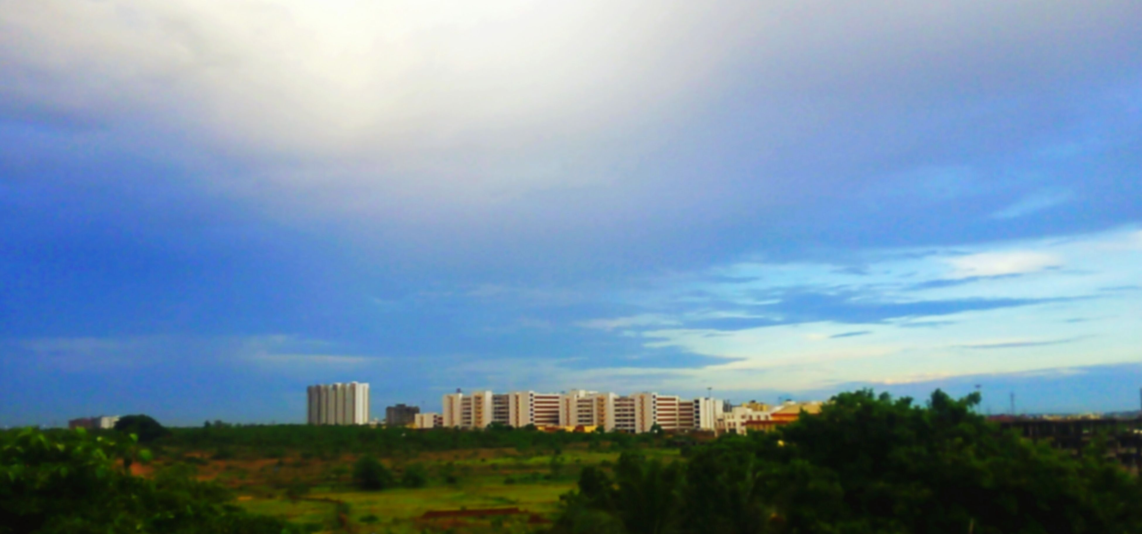 building exterior, sky, architecture, built structure, city, tree, no people, cloud - sky, outdoors, nature, growth, cityscape, grass, day