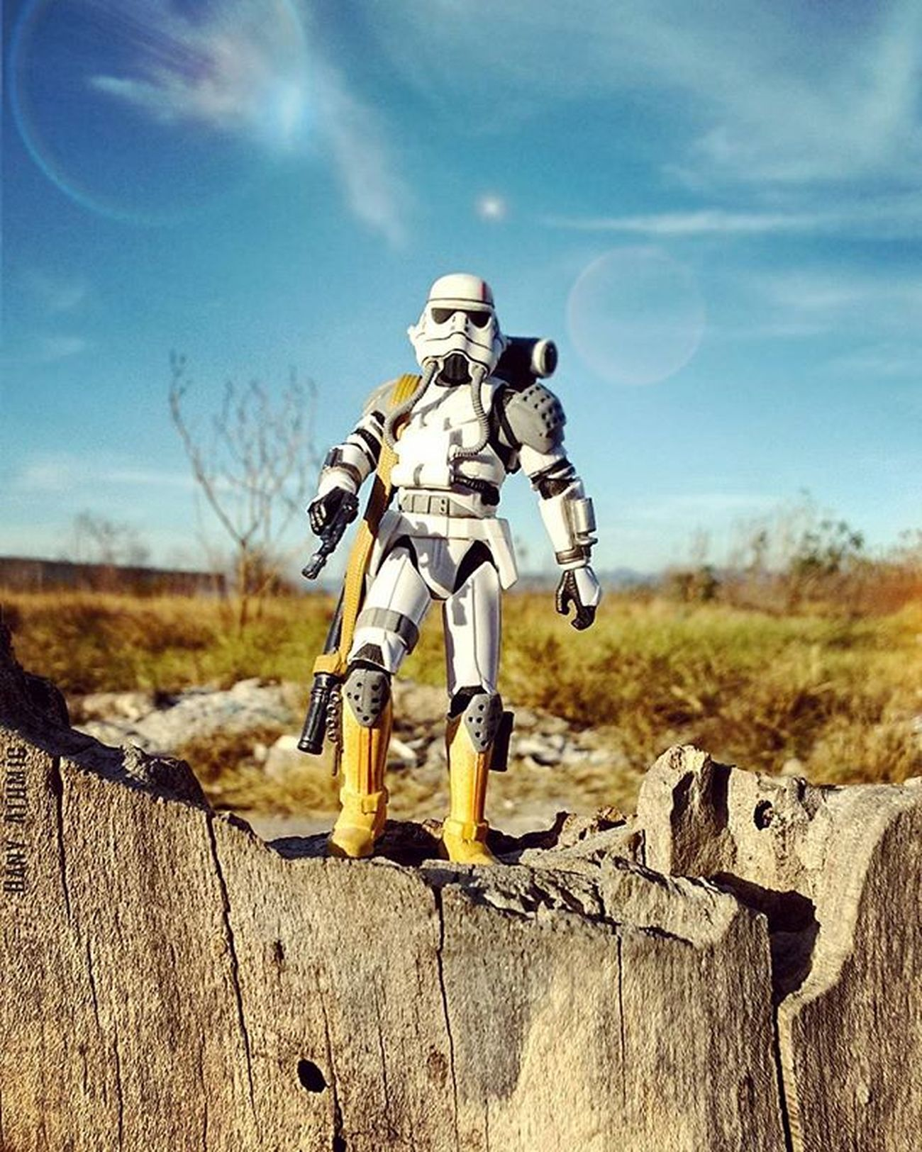 EvoTrooper (I really like this fig friends 👍😋) here the pic from the session of yesterday in the park, hope you like it buddies EvoTrooper Theforceunleashed Starwars Starwarstoyfigs Starwarsdaily TheSkywalkerlegacy Tcb_comeoverherepal
