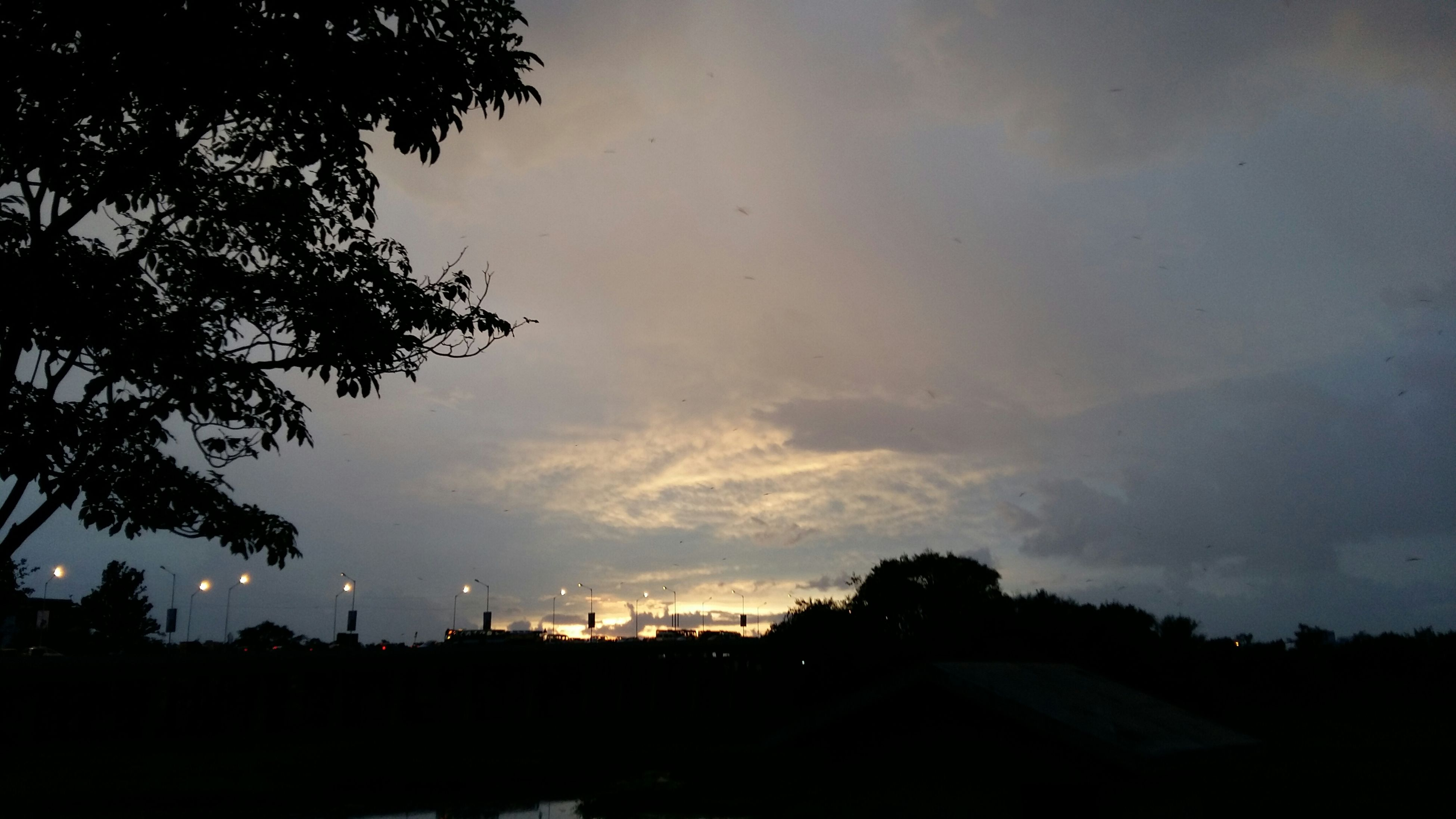 silhouette, sky, tree, sunset, cloud - sky, dusk, tranquility, beauty in nature, low angle view, scenics, nature, tranquil scene, cloudy, building exterior, built structure, cloud, outdoors, dark, architecture, no people
