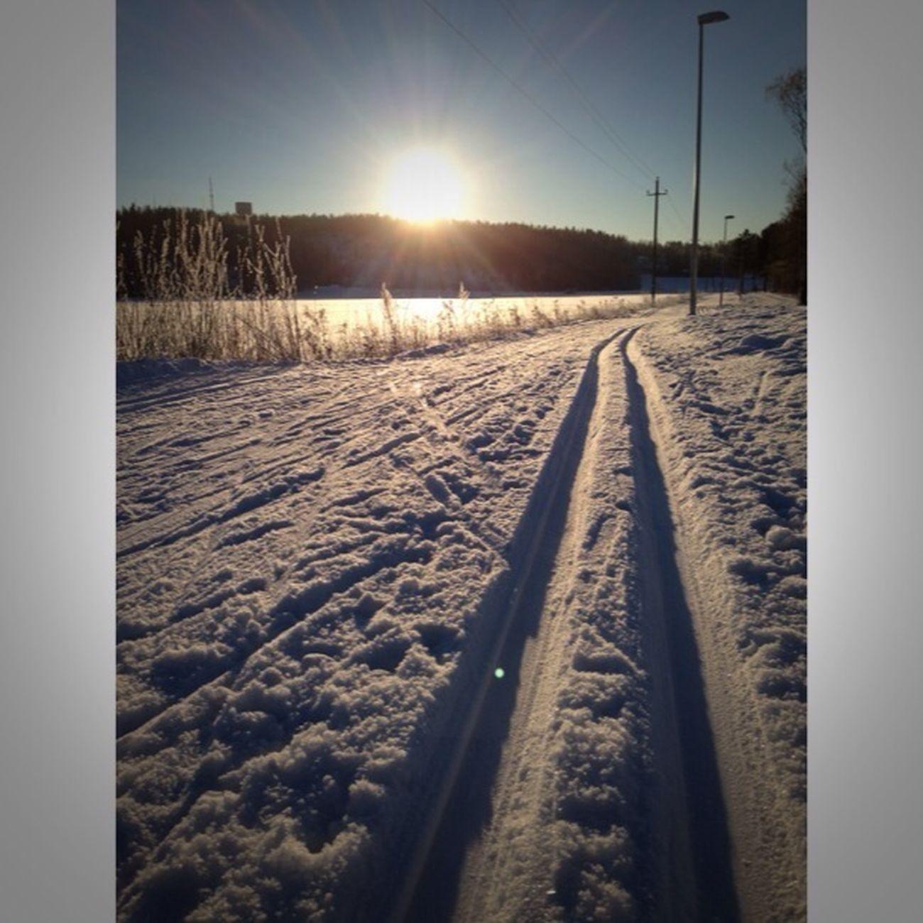 Enjoying The Winter