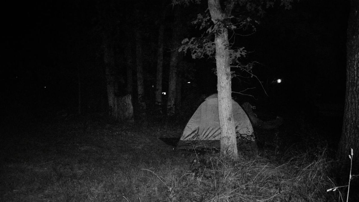 Taking Photos Outdoor Camping Forest Protecting Where We Play Shades Of Grey Black & White Black And White