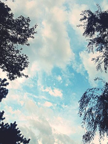 Look Up And Thrive Nature Clouds And Sky Naturelovers hmmm :)