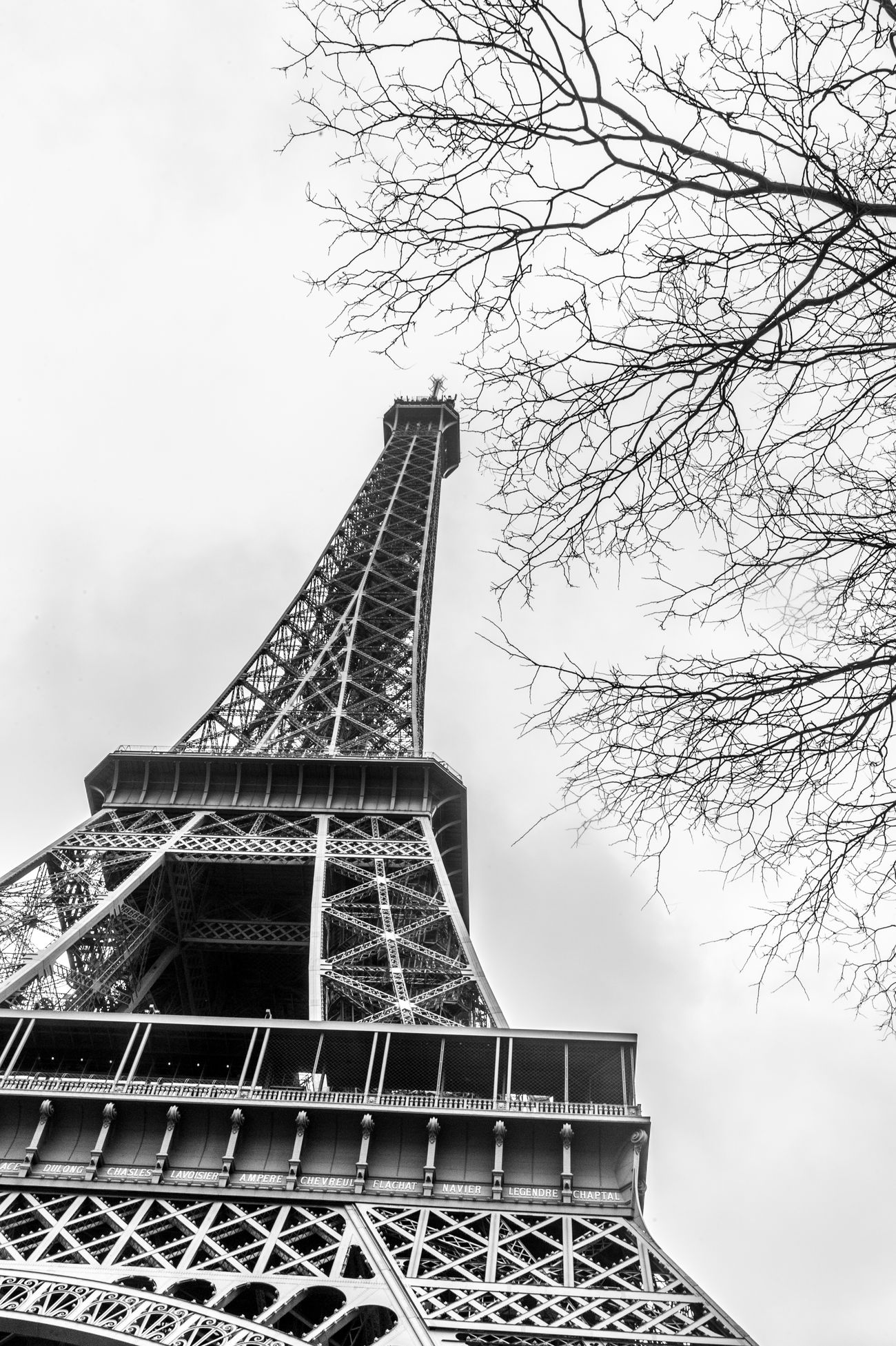 Paris 2014 LTV First Eyeem Photo Travel Photography Blackandwhite Paris ❤ Eiffel Tower Europapark