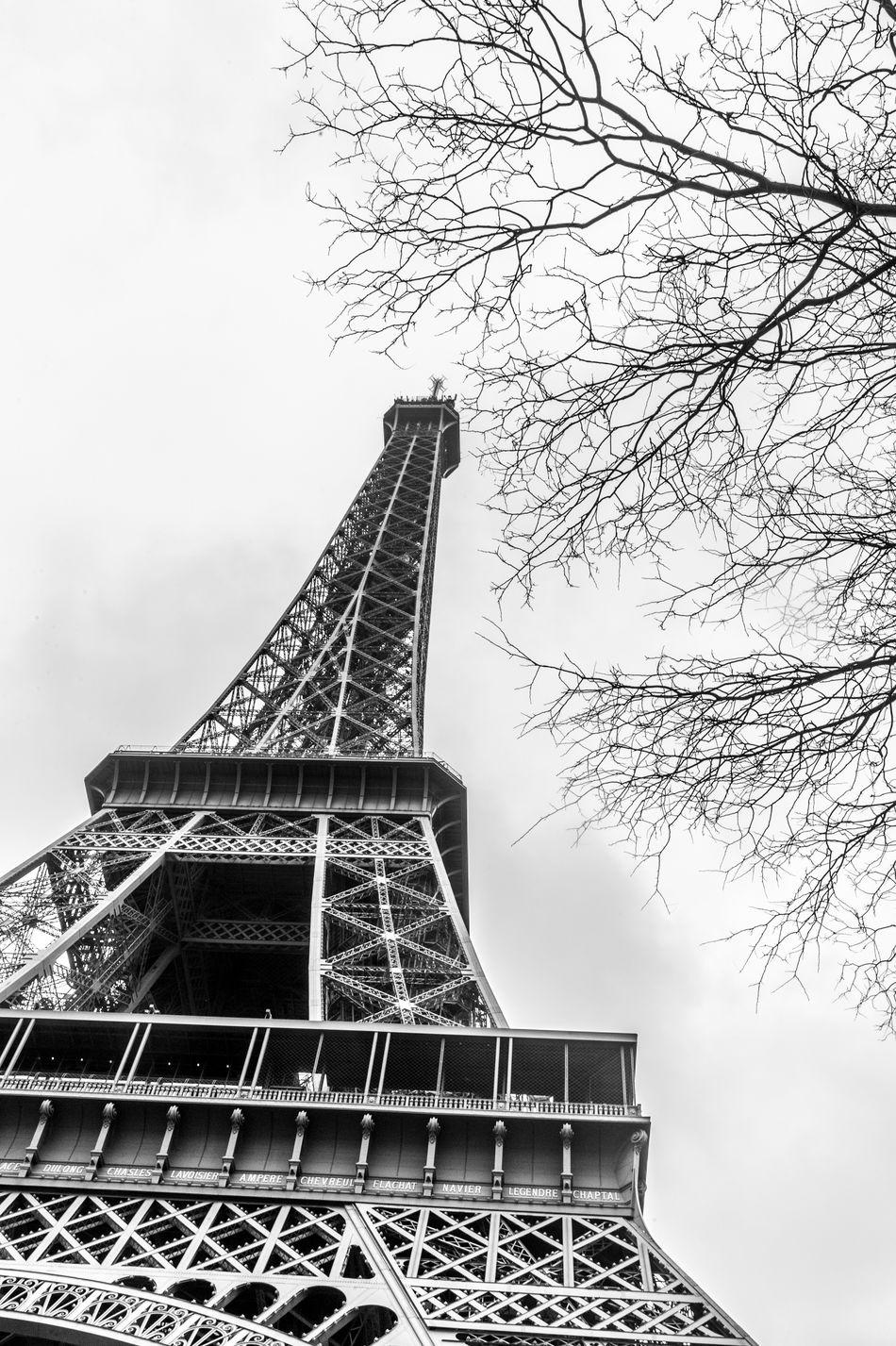 Paris 2014 LTV First Eyeem Photo Travel Photography Blackandwhite Paris ❤ Eiffel Tower Europapark