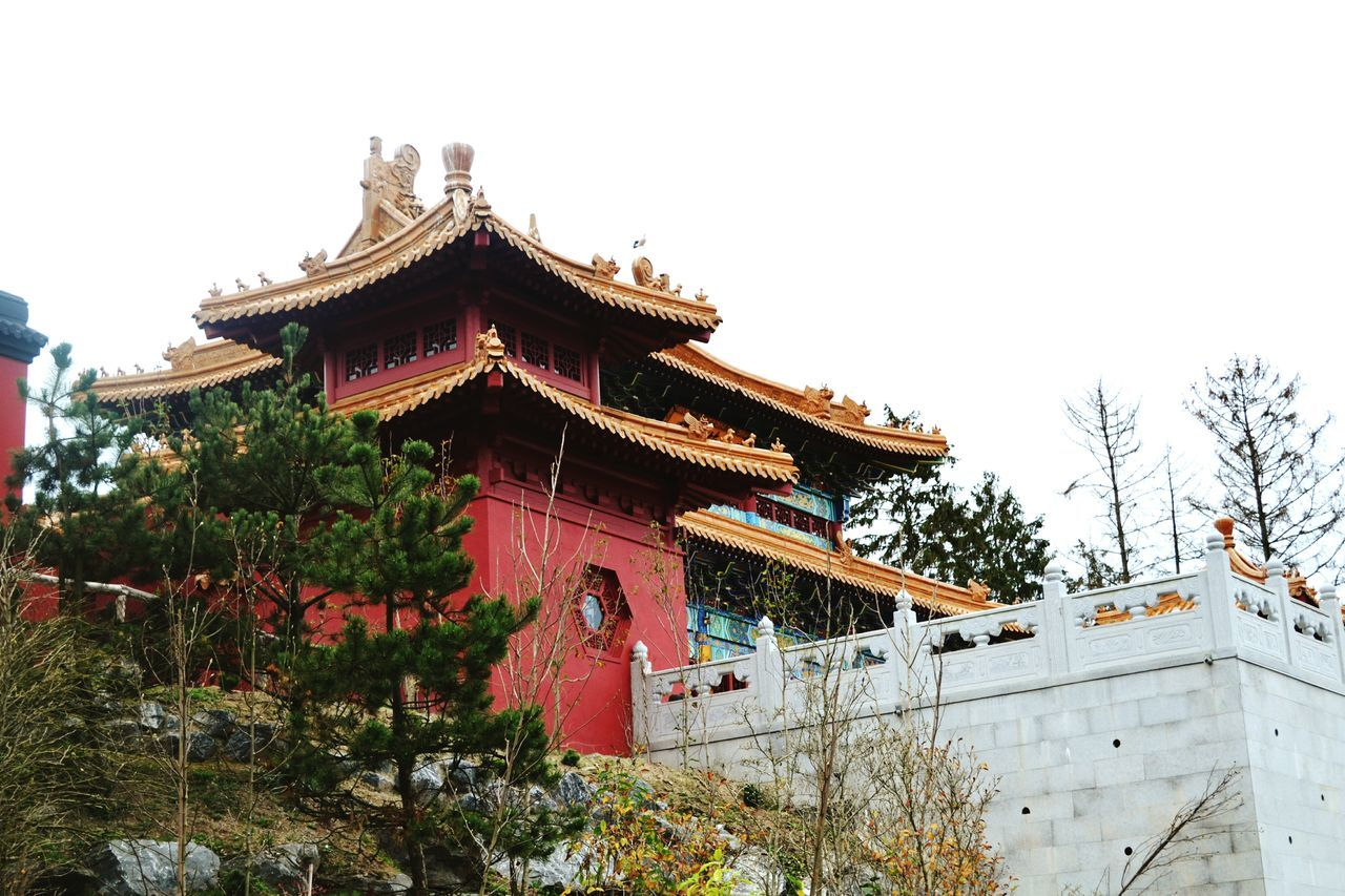 architecture, building exterior, built structure, tree, low angle view, eaves, traditional building, day, clear sky, roof, place of worship, outdoors, no people, nature, chinese dragon