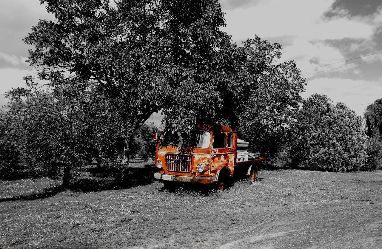 Trucks Old-fashioned Black & White