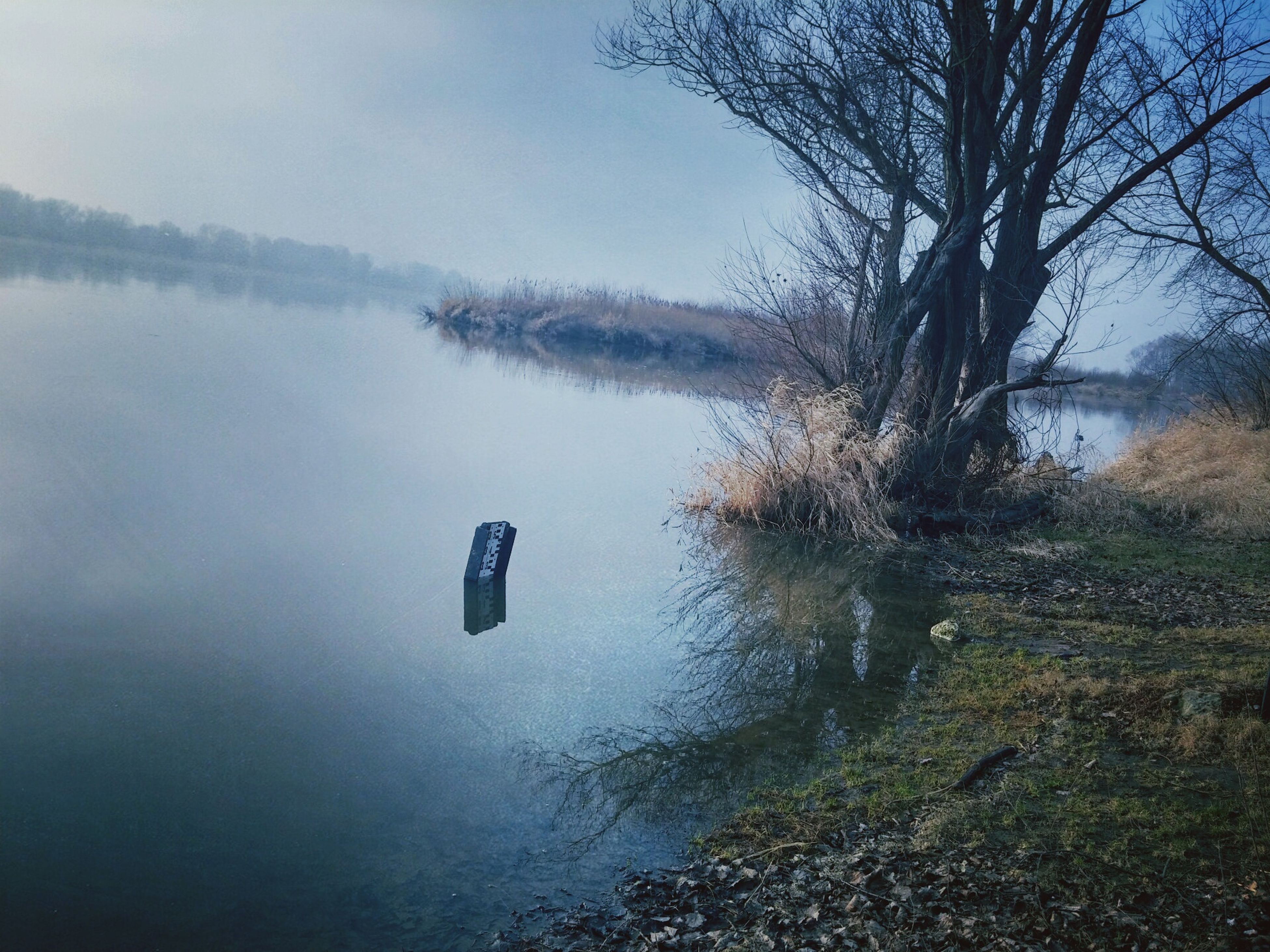water, lake, tranquility, reflection, tranquil scene, tree, scenics, nature, beauty in nature, bare tree, waterfront, sky, lakeshore, calm, idyllic, river, standing water, day, non-urban scene, outdoors