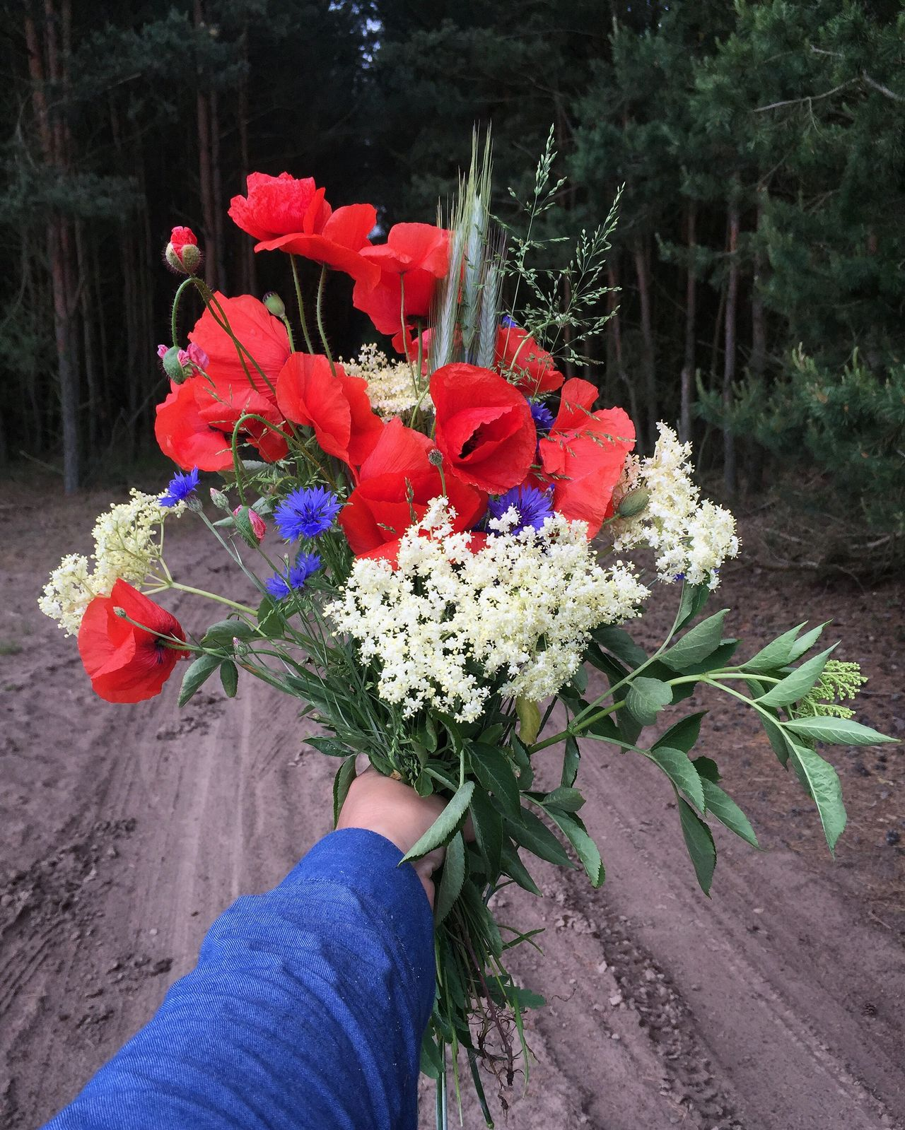 Flowers for you Flower Human Body Part Human Hand Nature Holding Real People Freshness Fragility Day Outdoors Bouquet One Person Plant Flower Head Beauty In Nature Close-up People Poppy Flowers Corn Flowers Holunder Happy Present Backgrounds Holiday Vacations