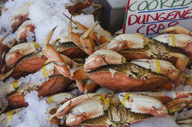 Abundance Arrangement Choice Close-up Day Dead Animal Display Dungeness Crab Fish Market Food For Sale Freshness Heap Large Group Of Objects Market Market Stall No People Raw Food Retail  Sale Seafood Still Life Variation