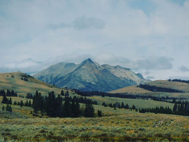 Landscape Tranquil Scene Scenics Mountain Rural Scene Tranquility Travel Destinations Farm Sky Beauty In Nature Growth Non-urban Scene Nature Cloud - Sky Field Green Color Tourism Outdoors Yellowsubmarine Wyoming