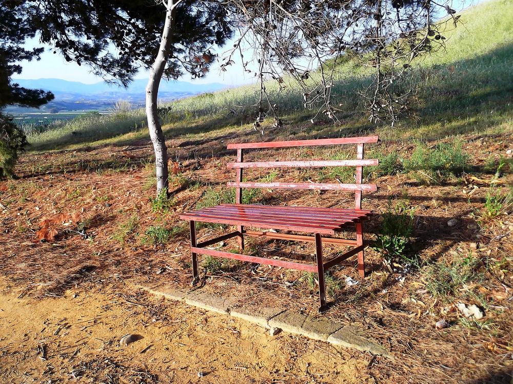 Agrigento Alberi Bench Campi Cielo Azzurro Colline Empty Natura Nature No People Outdoors Panchinavuota Sicilia Sky Tramonto Tree Vegetazione