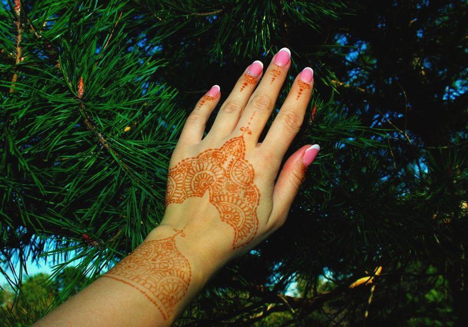 Human Hand Human Body Part Nail Polish Fingernail Outdoors Mehendi Art Christmas Tree Nature Beautiful Nature Nail French Manicure
