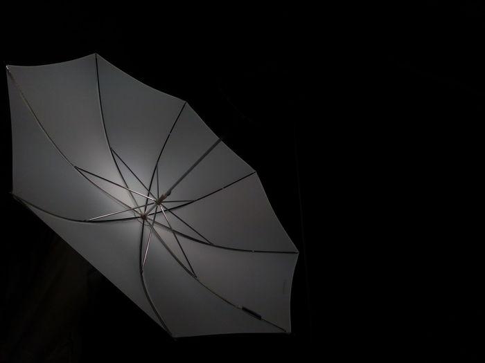 Dark Black Background No People Studio Shot Indoors  Close-up Day