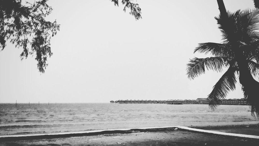 Bagan lalang beach Beachphotography Black And White