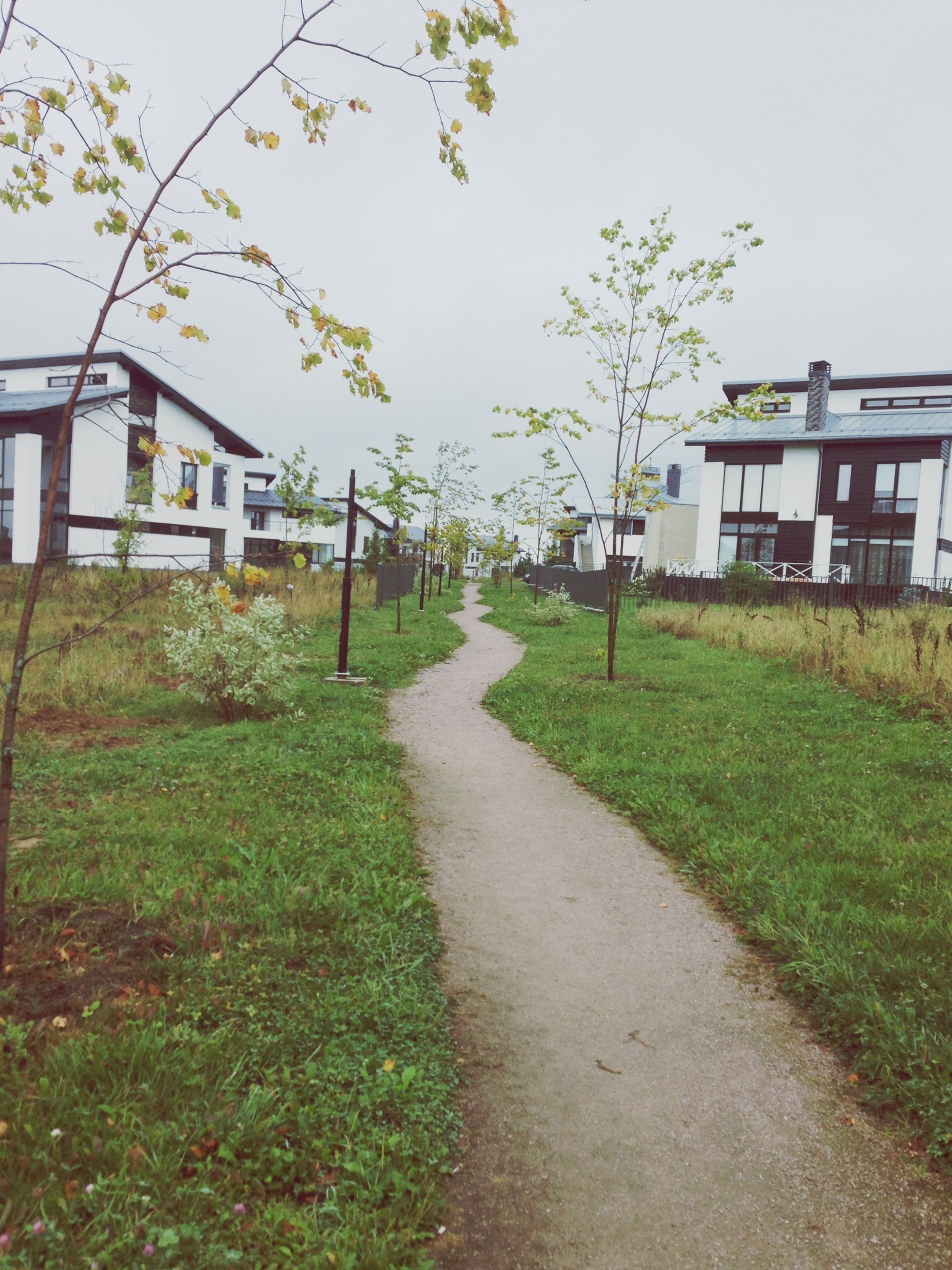 building exterior, architecture, built structure, grass, house, the way forward, clear sky, residential structure, tree, plant, growth, residential building, day, pathway, footpath, field, street, outdoors, diminishing perspective, sky
