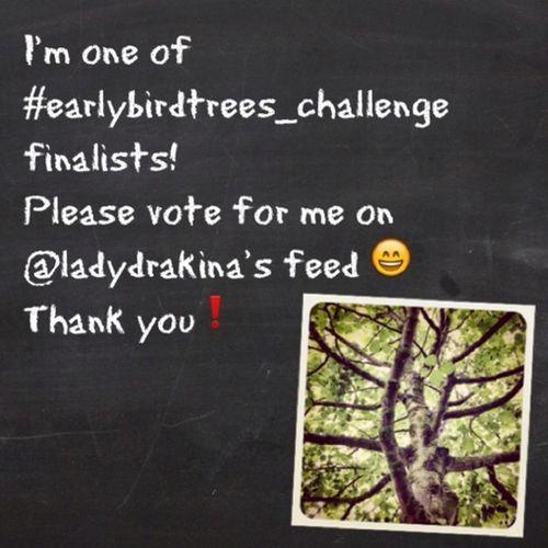 Wow, my #tree is one of finalists of ladydrakina's #earlybirdtrees_challenge. If you like it, please vote for it on ladydrakina's feed. Appreciate it ?? Thank You❕? Tree Earlybirdtrees_challenge Earlybirdtrees_finalist