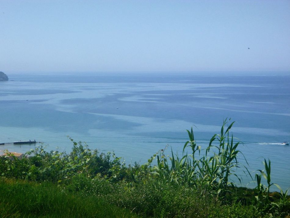 Beauty In Nature Blue Calm Coastline Different Shades Of Blus Grass Green Color Growth Horizon Over Water Idyllic Landscape Nature No People Non-urban Scene Outdoors Plant Remote San Stefanos, Corfu, Greece Scenics Sea Seascape Sky Top Of The Mountain Tranquil Scene Water