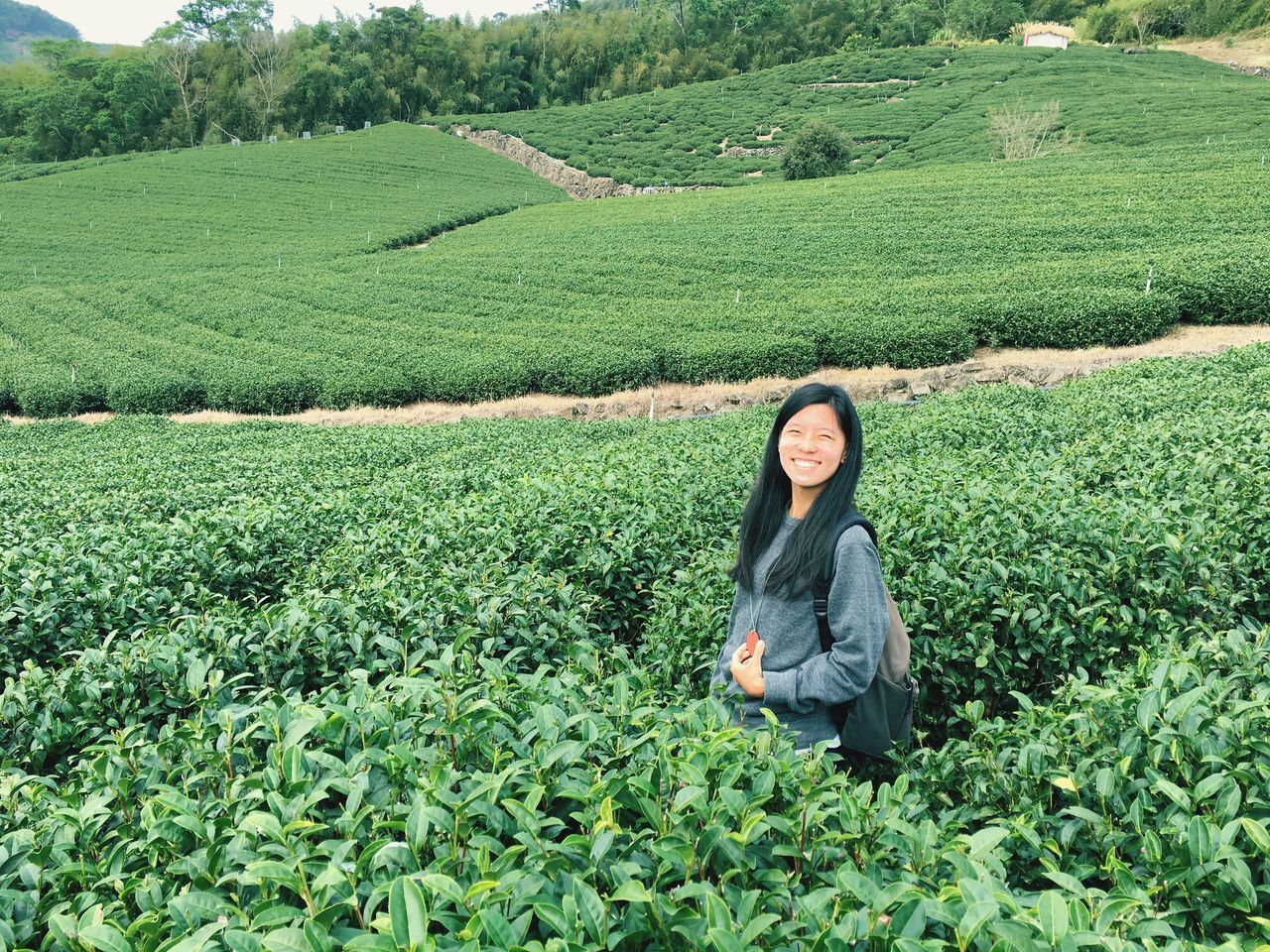 farm, only women, agriculture, one person, women, working, black hair, adult, green color, tea crop, real people, one woman only, plant, young adult, occupation, young women, field, looking at camera, businesswoman, nature, portrait, outdoors, smiling, rural scene, business, growth, people, adults only, cheerful, scenics, beauty in nature, beauty, day, freshness, full length, one young woman only, manual worker
