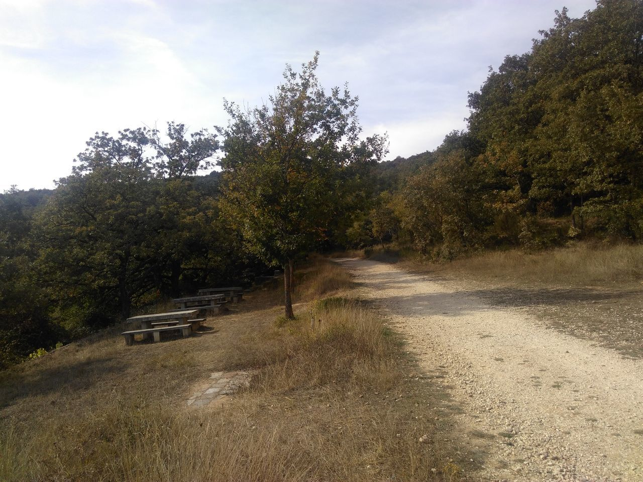 No People Jakobsweg Way Of Saint James Camino CaminodeSantiago Camino De Santiago Road Track Way Reise Travel
