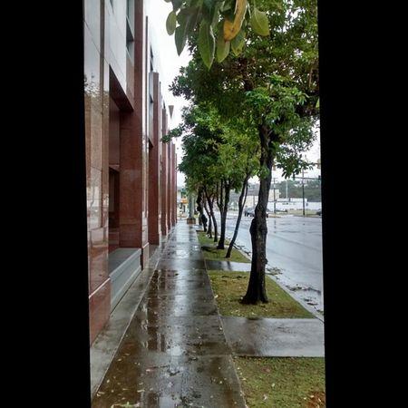 Wind & Rain COR4 Bavi Tropicaldepression Typhoon MotoG nofilter