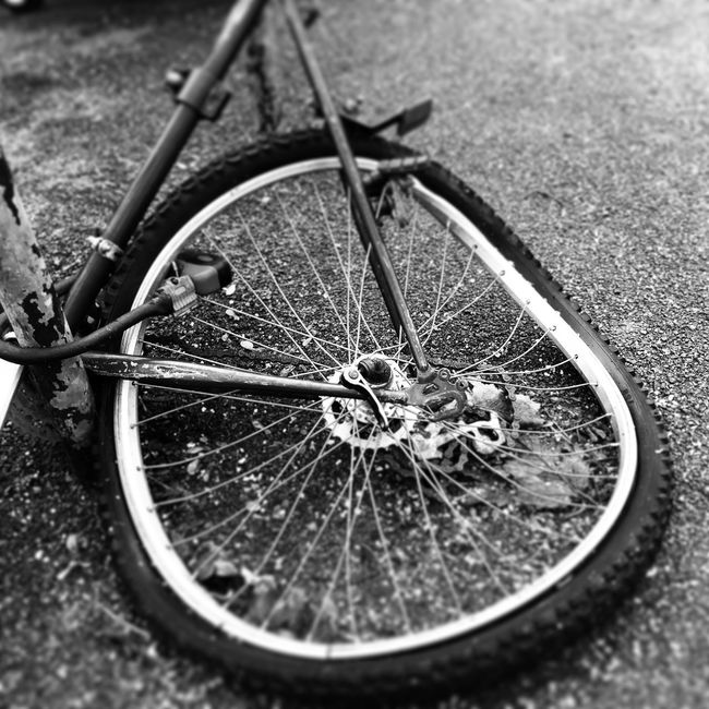 Bike Wheel On Your Bike Damaged Damaged And Wrecked Damaged Bike Wheel Vandalism