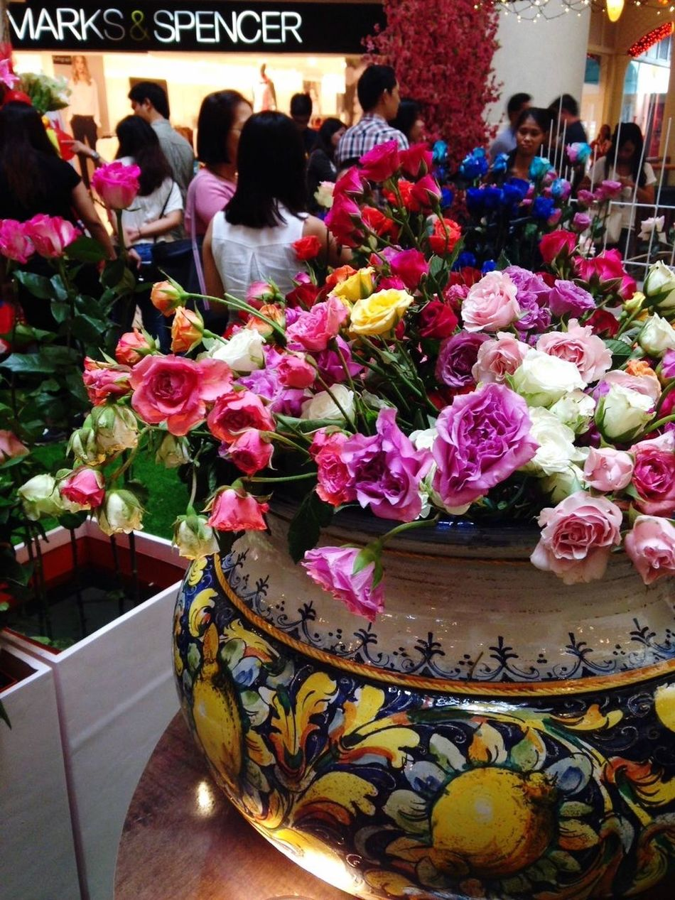 Flowers Roses Valentines Love Colorful