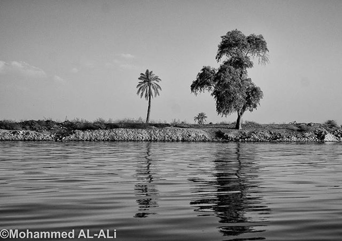 Sony Nex7 Sonynex7 Basrah Iraq River Shattalarab Palms Tree Blackandwhite Monochrome Shadow Light Reflection