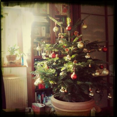 Christmas by judit