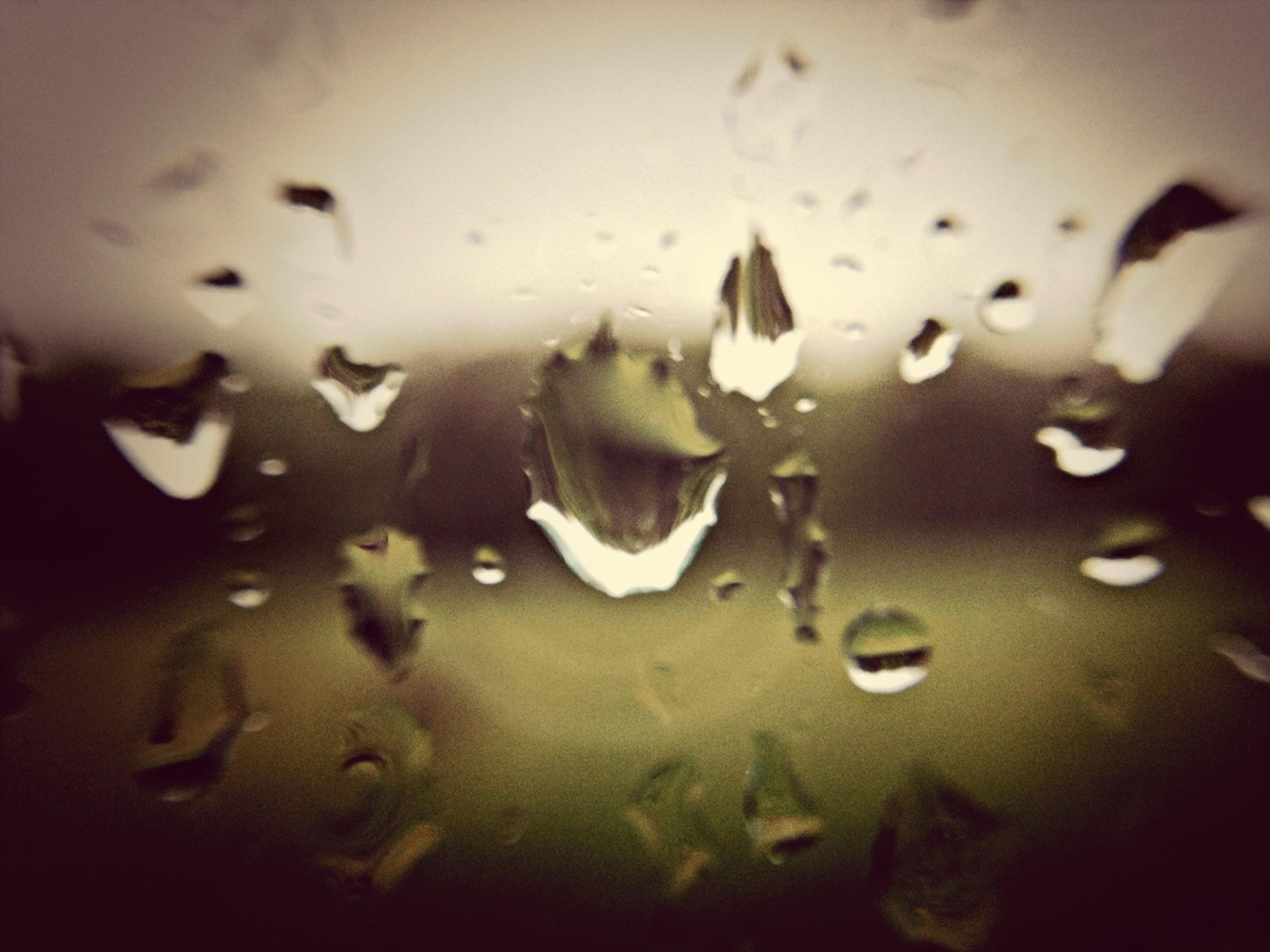 water, wet, drop, indoors, rain, full frame, backgrounds, window, transparent, close-up, glass - material, weather, raindrop, reflection, no people, season, glass, nature, selective focus, high angle view