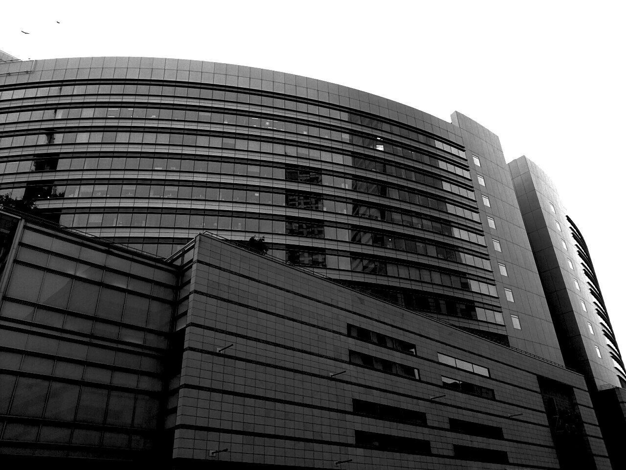 Monochrome Photography Building Exterior Black And White Street Photography Glass Building Glass Windows New Building  Architecture_collection EyeEm Street Photography Architectural Detail In The Centre Of City Windows EyeEm Buildings EyeEm Best Edits EyeEm Gallery EyeEm Best Shots Simmetrical Simmetrical Building Finestre Bianco E Nero Eyeem Black And White Grattacielo Skyscraper