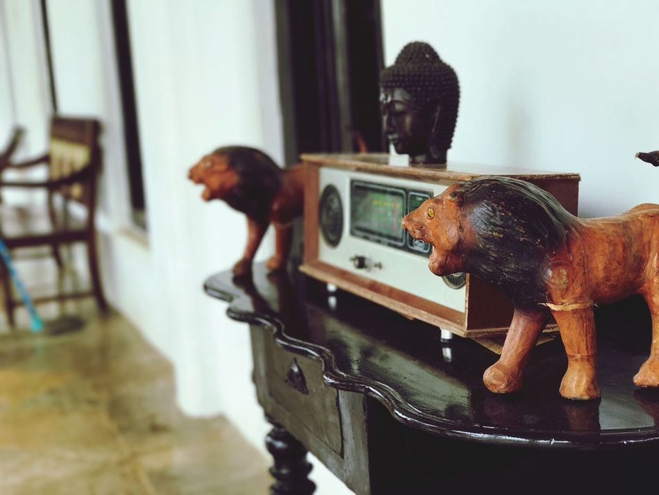 Animal Representation One Animal Animal Themes Indoors  Figurine  Standing Day Mammal Domestic Animals Full Length No People Close-up
