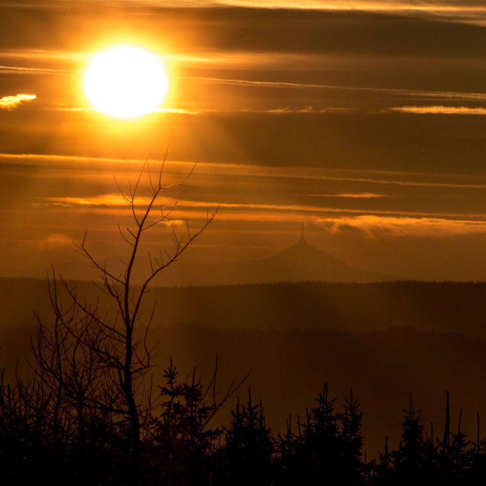 Sundowner - kitschig edition Sunset Sun Tree Landscape Scenics Sunlight Silhouette Orange Color Forest Pinaceae Mountain Beauty In Nature Nature Fog WoodLand Pine Tree Sky Gold Colored Outdoors Sunset_collection EyeEm Best Shots Long Exposure Peak Peak Of Mountain
