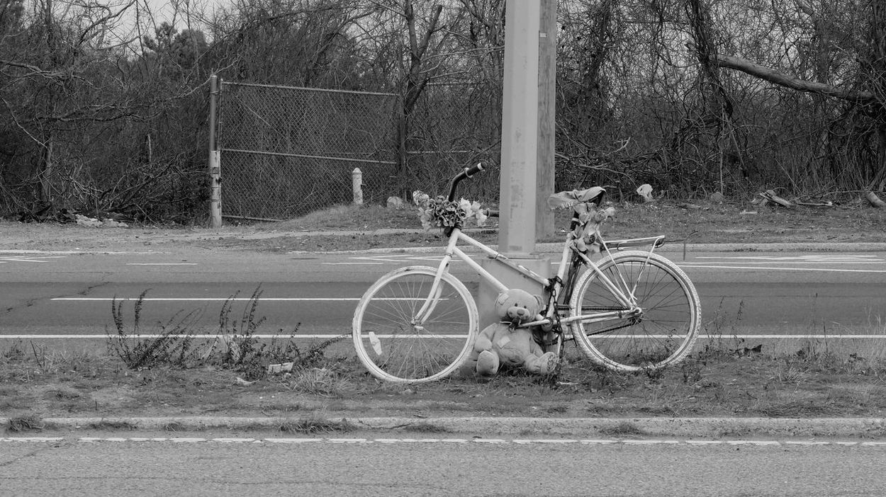 When strangers don't forget you. Ghost Bike Bicycle Land Vehicle Black And White Transportation Mode Of Transport No People Day Outdoors Tree Nature Photography