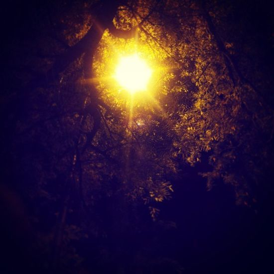 This was taken yesterday while having a midnight walk thro @Coimbatore. Huge glow of streetlight through the tree... with a bit of Insta Filters voila this we get... Midnight Aftermovie Guys Walk Coldwind 8MPSamsungGalaxy Xprofilter _soi OnelastrideatCBE : Sreeni