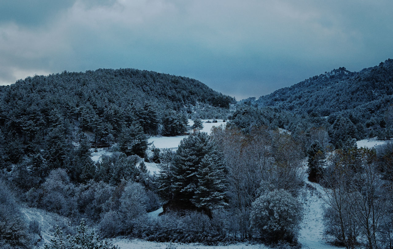 Winter in Bolu Beauty In Nature Cold Temperature Day Dirt Road Hills And Valleys Hillside Icy Nature No People Outdoors Paths Pathway Scenics Sky Sky And Clouds Snow Snowy Mountains Tranquil Scene Tranquility Tree Trees And Sky Winding Path Winding Road Winter Trees Wintertime