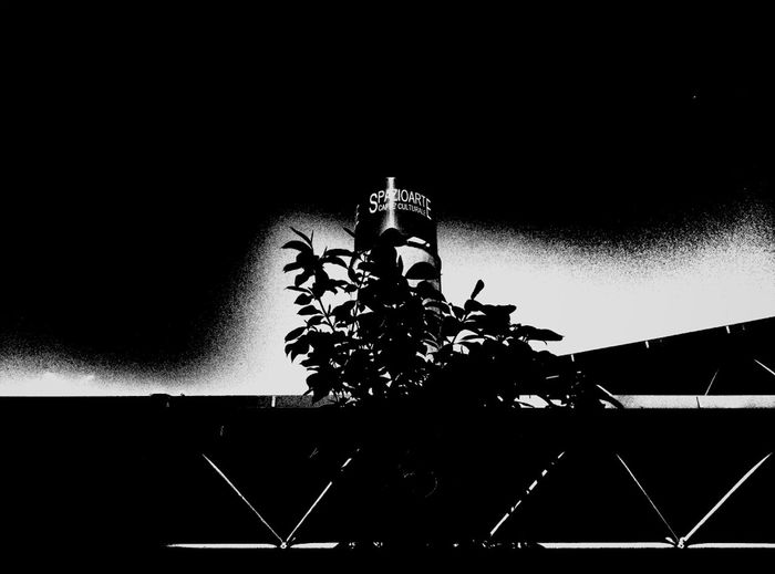 Blackandwhite Artificial Nocturne