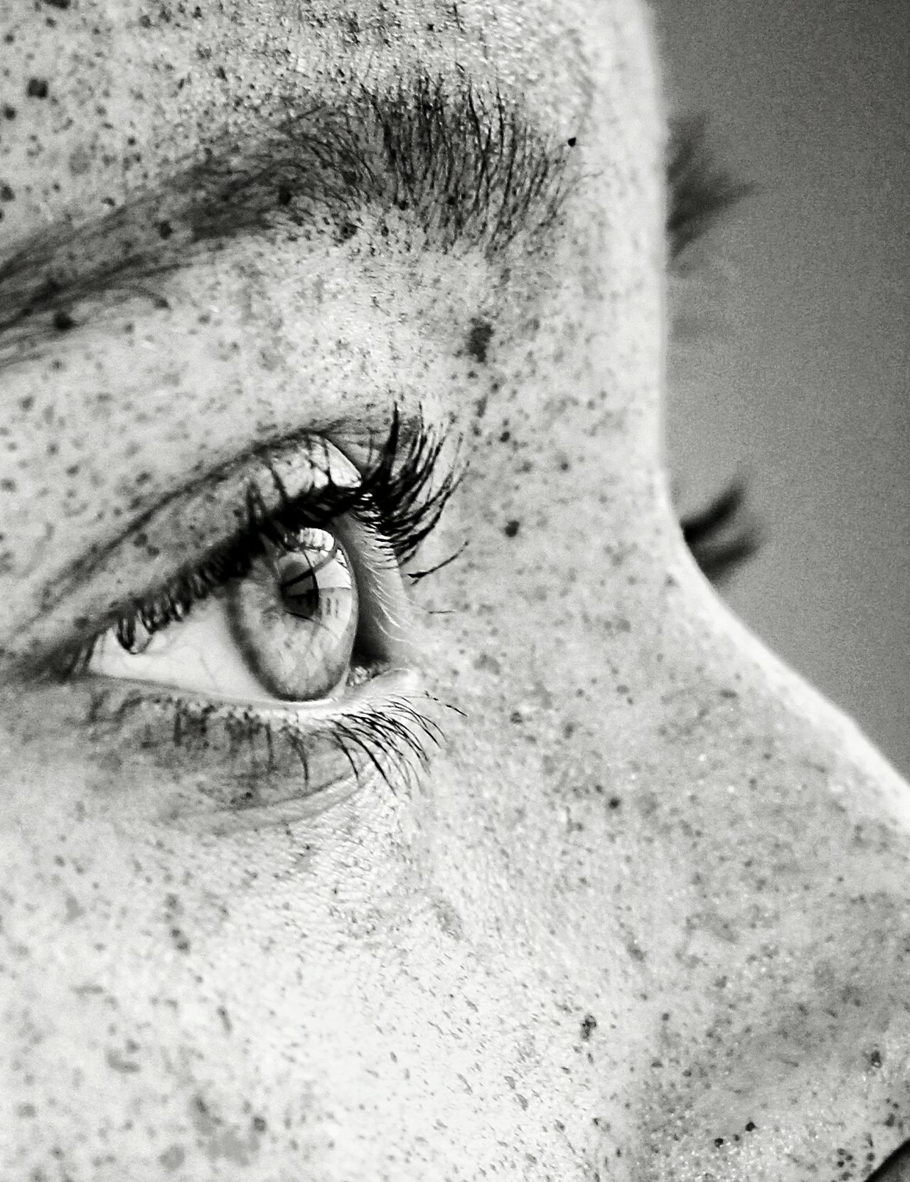 Gegenüber human eye eyelash close-up eye real people one person one woman only young adult human skin freckle eyebrow only women eyesight eyeball one young woman only sensory perception macro macro_collection people young women girl portrait women blackandwhite Monochrome_Photography uniqueness Fresh on Market 2017