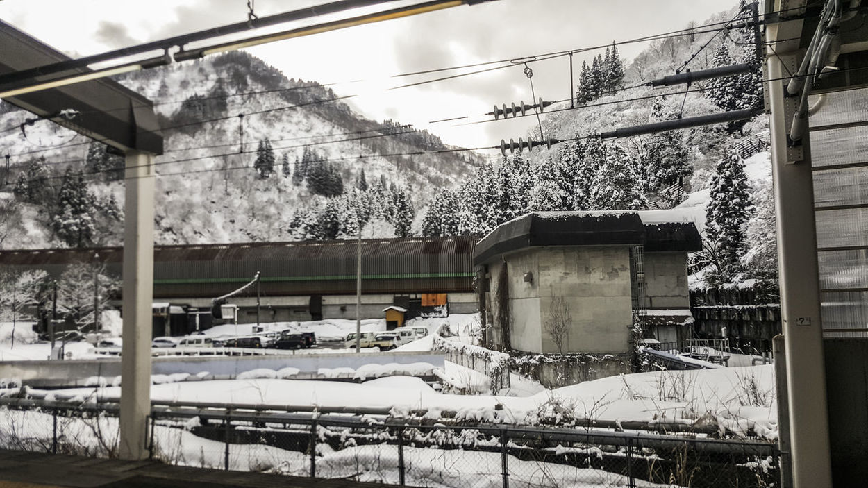 Architecture Building Exterior Built Structure Cold Temperature Japan Nature No People Outdoors Sky Snow Tree Weather Winter YUZAWA